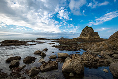 Rialto Beach Tidepools