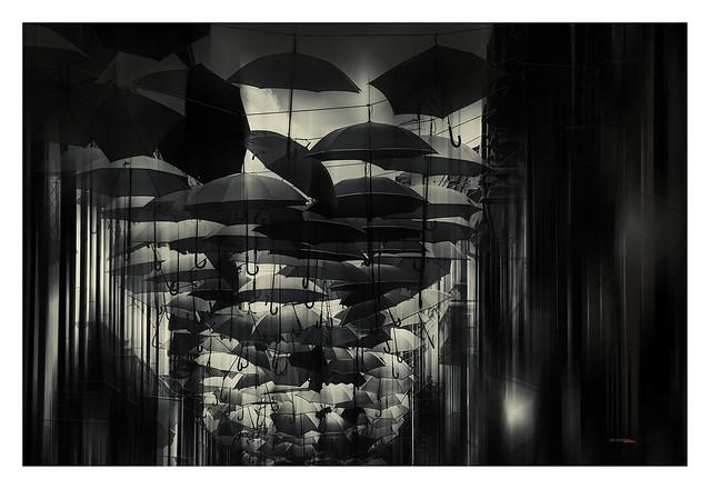Umbrella´s Rain - Lluvia de paraguas