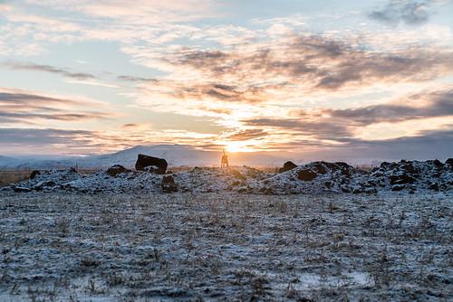 01112018 2018 holtaoglandsveit holtsmúli iceland icelandichorses kilja landsveit meiritunga november november2018 rangárþingytra southiceland suðurland hestar horses