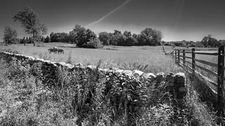 Field of battle | by Ed Rosack