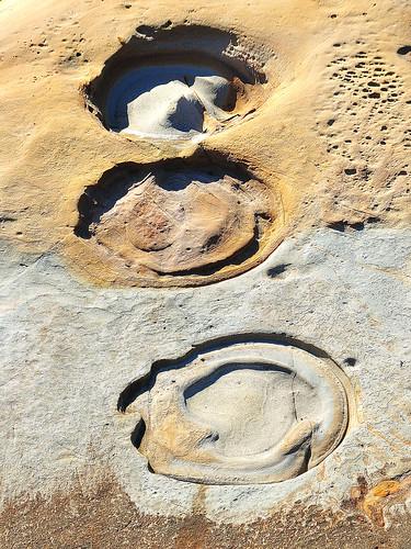 eechillington nikond90 viewnx2 viewnxi pointlobosnaturereserve california coast rocks patterns hiking abstract nature