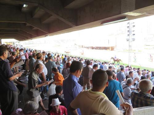 ロイヤルバンコクスポーツクラブ競馬場のスタンドの下段後方