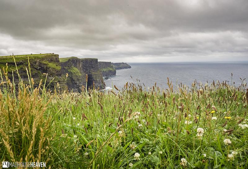 Ireland - 0677