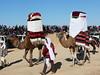 Festival International du Sahara: Velbloudi pro nevěsty, foto: Petr Nejedlý