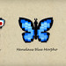 Butterflies by Johan Alexanderson (Jalex)