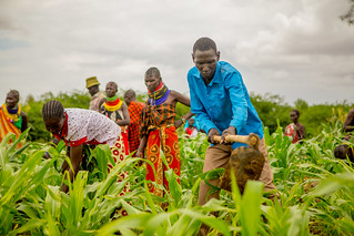 Turning the Desert Green: Building Resilience in East Africa | by USAID Africa