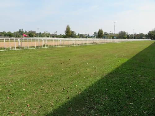 チェンマイ競馬場のスタンド前の芝生