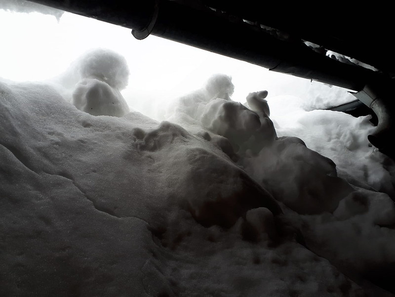 SchneedruckRosenau-22