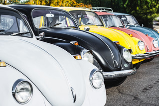 Ross Clan VW's | by marlow@marlowsharpe.com