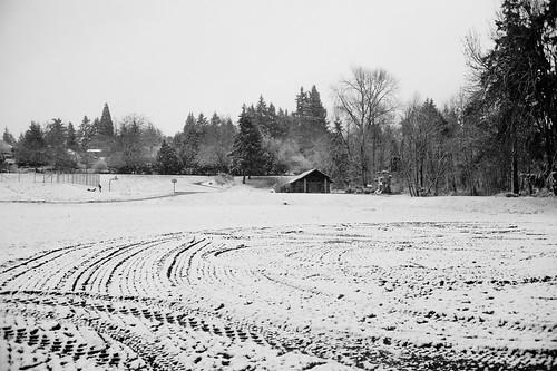 snow winter cold playground ballfield homesteadfield mercerisland washington playing leicam9 35mmsummicron