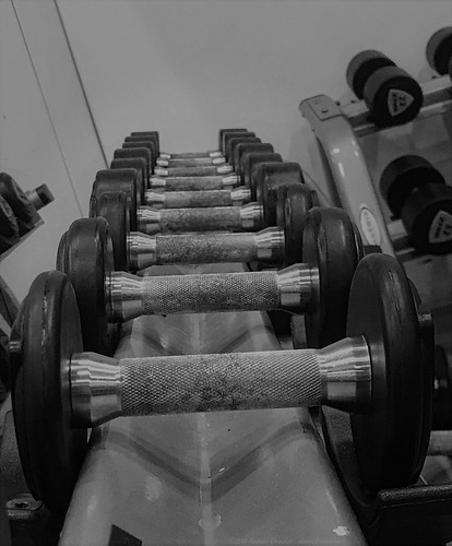 A train of weights for the training | by dksesh