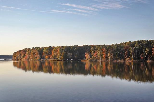 Basking in Autumn's sunset 🍁