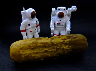A Recently Released NASA Photo of the Discovery of a Massive Pickle on the Planet ProximaB in the Andromeda Galaxy