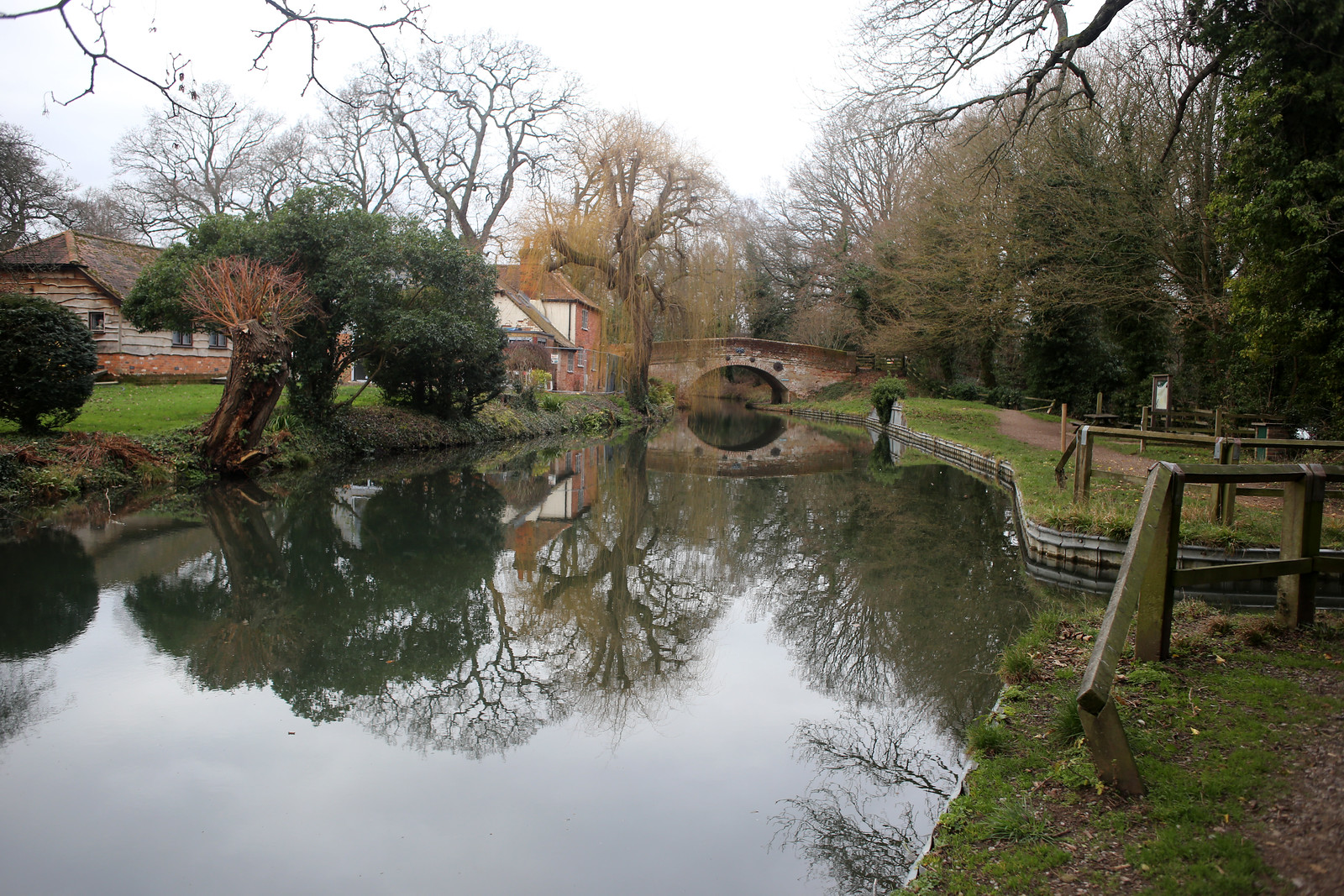 The Basingstoke Canal near Winchfield