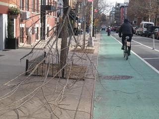 Branch down,.. blocked lane  !