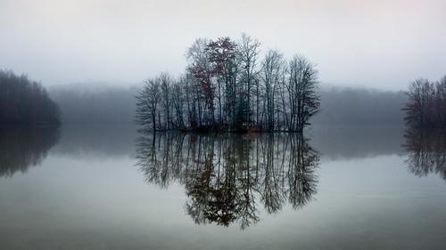 cheshire connecticut connecticutphotographer d750 fog landscapephotographer mist naturephotographer newengland nikon trees usa winter digital rain reservoir water
