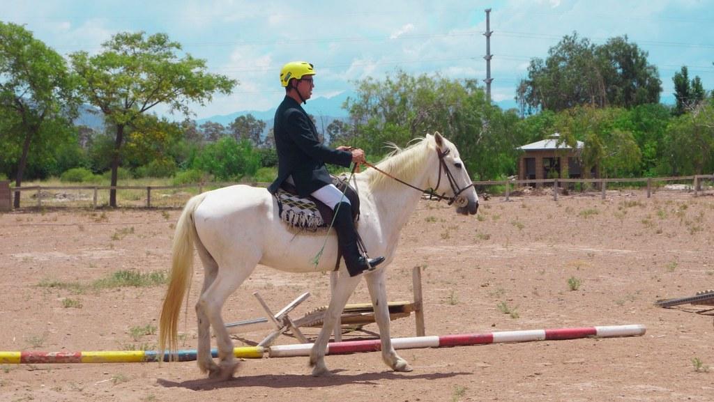2018-11-30 DEPORTES Fundación Equinoterapia San Juan, desde Pocito al mundo3