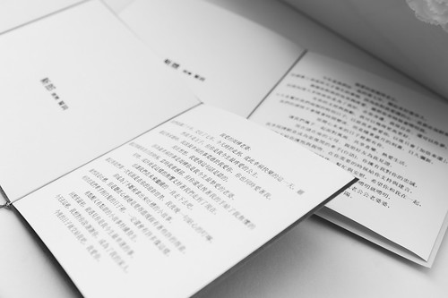 JOE-100126   by 陳敬元 (JOE愛攝影)