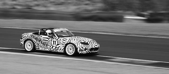 Is that a Zebra... No its an MX5!