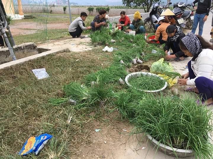 Binh Thuan 9
