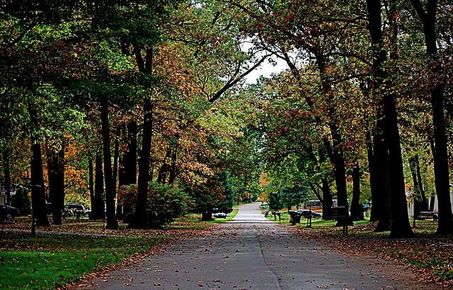 Seasonal Street