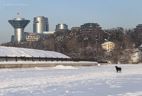 Winter cityscape | by Lyutik966