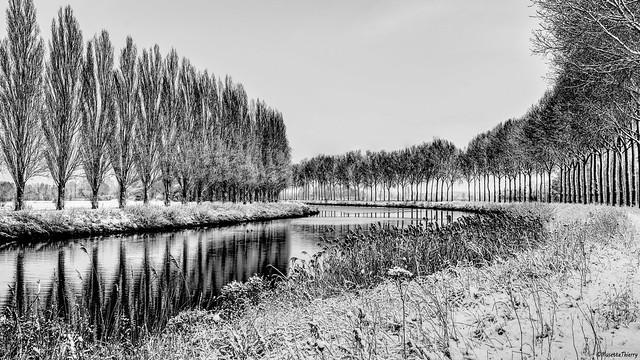 l'escaut (Belgique)