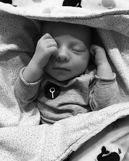 #ASIPB001 ~ Ronen Grey Griffin joined our roster on November 18th. Newest merch model and ultimate sleep playlist judge. The true superhero, his beautiful mom @la.cg. | by astrangelyisolatedplace