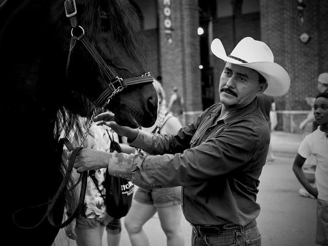 Horse Handler, bw version