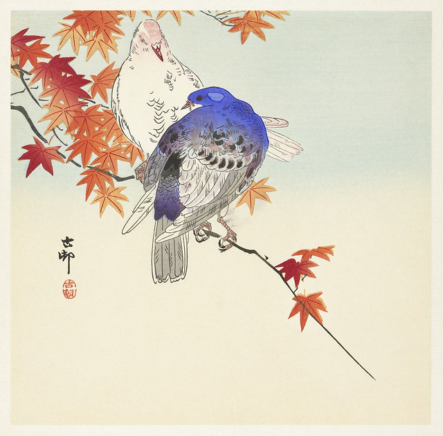 Two pigeons on autumn branch (1900 - 1936) by Ohara Koson (1877-1945). Original from The Rijksmuseum. Digitally enhanced by rawpixel.