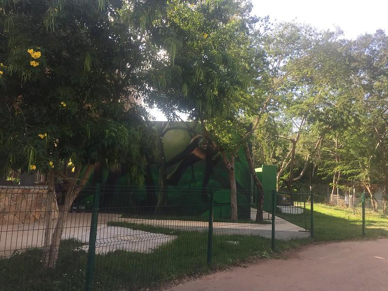 Animaya Parque Zoológico del Bicentenario en Mérida