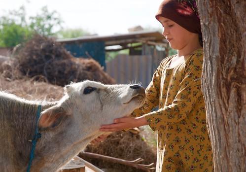 Rural Tajikistan