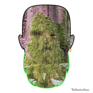Green Beard | by The Pareidolia Forest