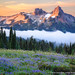 The Tatoosh Range by David Swindler (ActionPhotoTours.com)