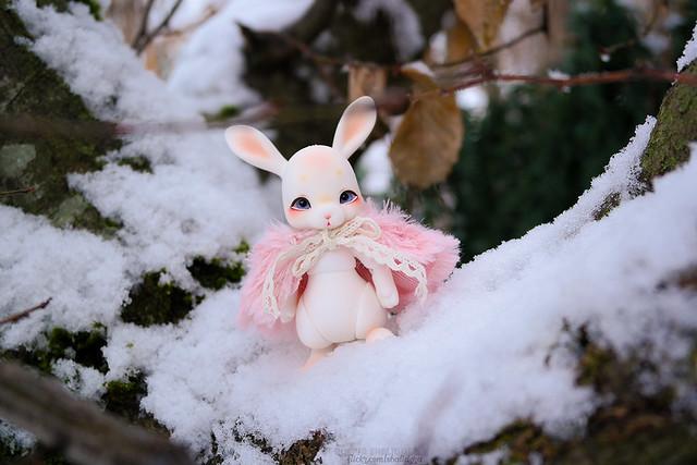 Rukiya's Dolls MAJ 14/10 ~Happy Halloween !~ p33 - Page 33 45928107635_9c5092f360_z