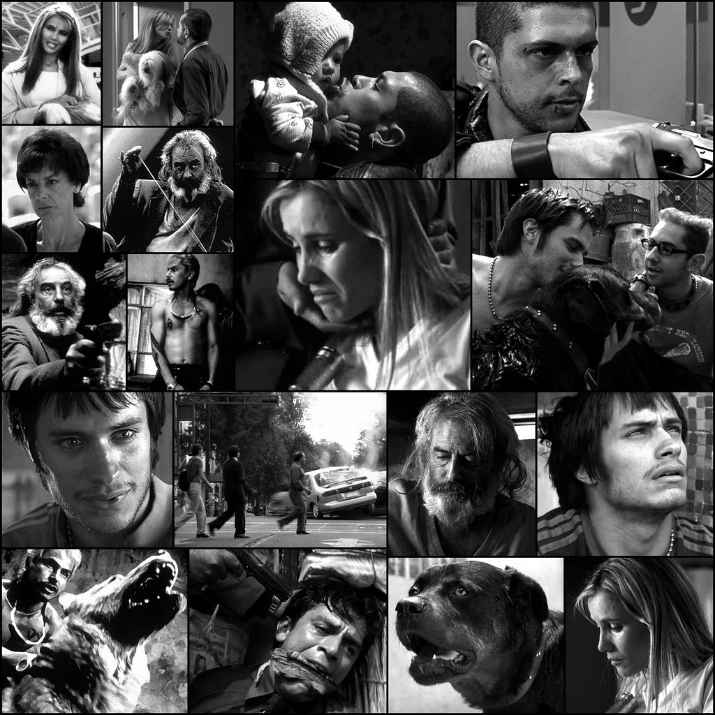 Amores Perros 2000 amores perros 2000 picture collage | movie scenes picture co