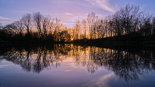 daisynook countrypark sammysbasin sunset symmetrical peaceful beautiful manchester oldham failsworth uk hollinwoodcanal reflection trees horizon path pool basin clouds