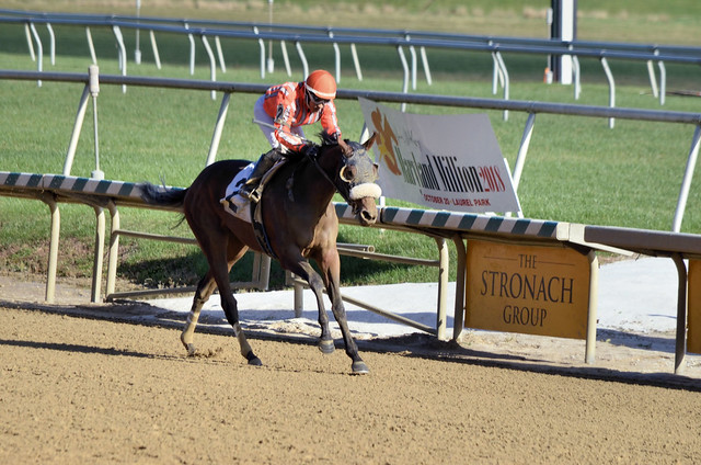 2018-11-03 (58) r8 Carol Cedeno on #2 Jilted Runaway for the win