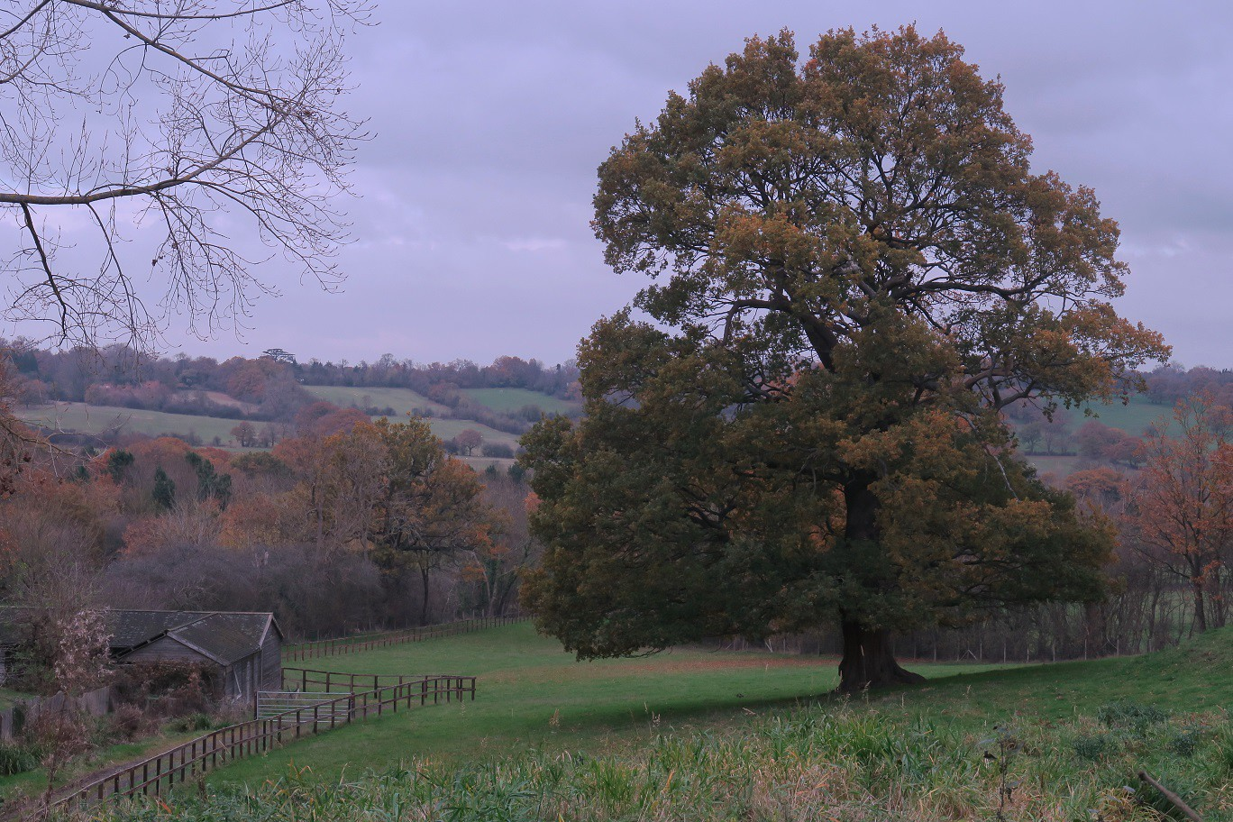 Totteridge Circular 25 Nov 2018 No3 SWC