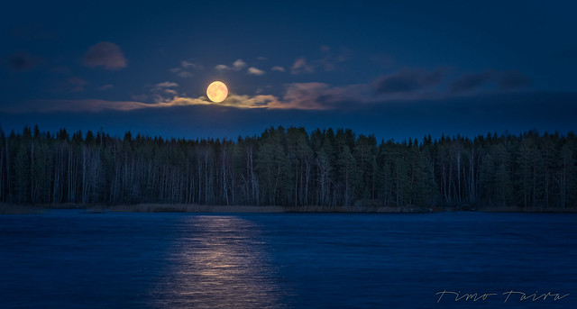 November moon.