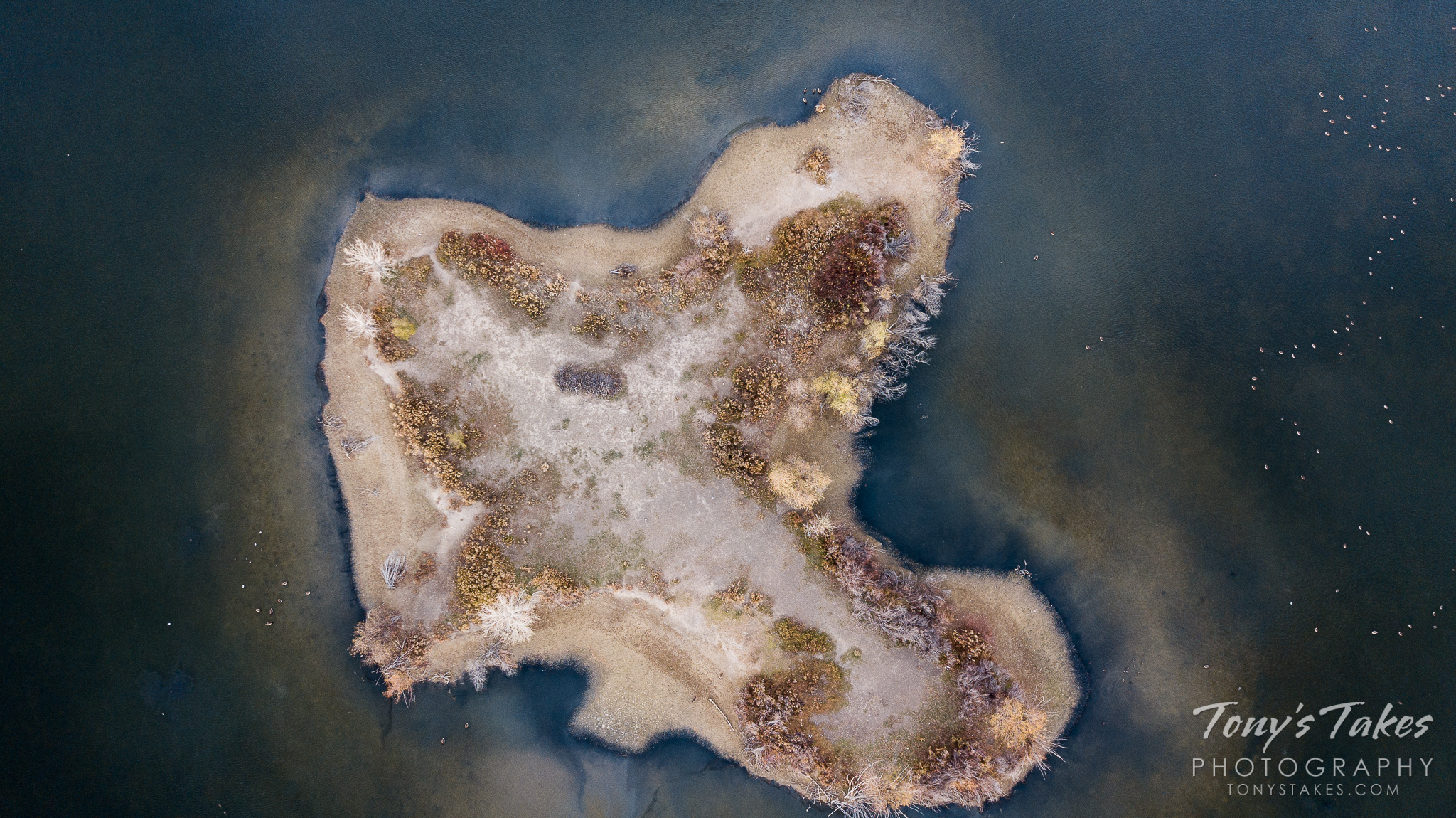 Bird's eye view of island looks like an abstract