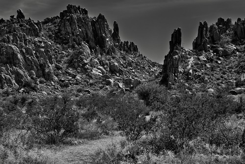 An Unearthly Look to a Big Bend Landscape (Black & White, Big Bend National Park) | by thor_mark 