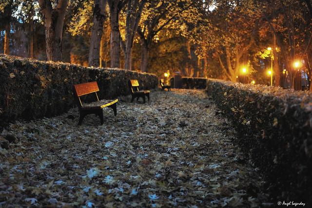 Parque Antoniutti. Pamplona. Navarra