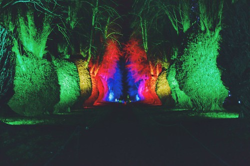 Garden Lights Kingston Lacy | by gallop080