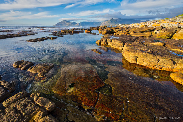 Kommetjie coast, South Africa