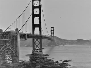 The Golden Gate Bridge in Black and White | by Anton Shomali - Thank you for over 2 million views