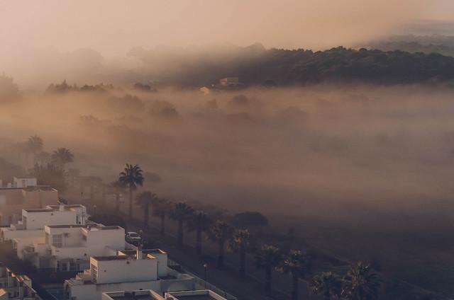 Foggy sunrise on the island