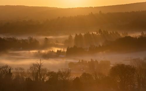 landscapephotography sunrise goldenlight mist surreyhills surrey northdowns nikon d850 trees fields mystical atmospheric