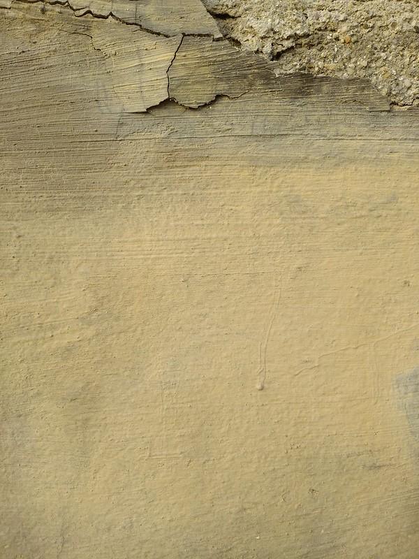Orange Wall Texture #10