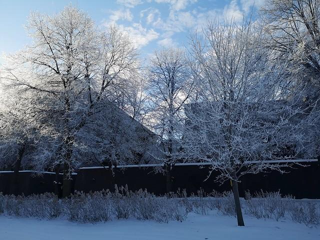 Frosty Friday morning in Ottawa.   #huaweip20pro  #auto